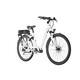 Ortler Montana E-Trekking Bike white